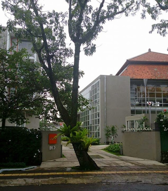 Pohon di depan jalan masuk di Bandung yang tetap dipertahankan.
