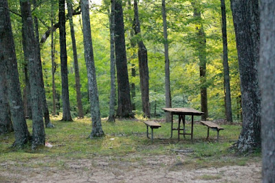 Top 10 Scenic Campgrounds in Southern Illinois