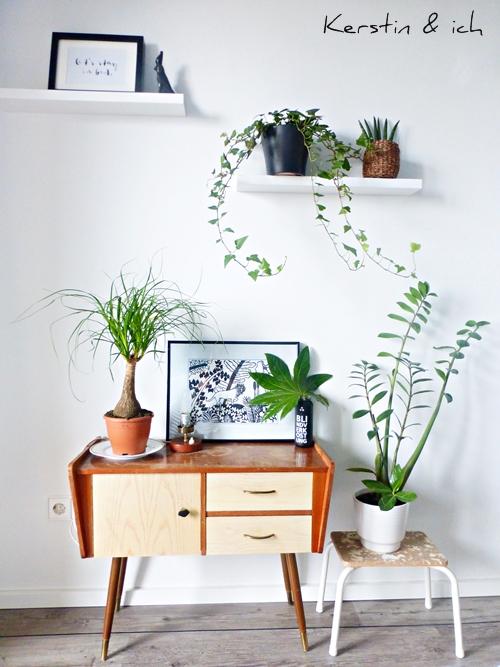 Dekoration Plants Pflanzen black and white