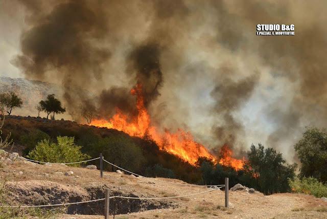 Ανακοίνωση του ΚΚΕ για την φωτιά στις Μυκήνες