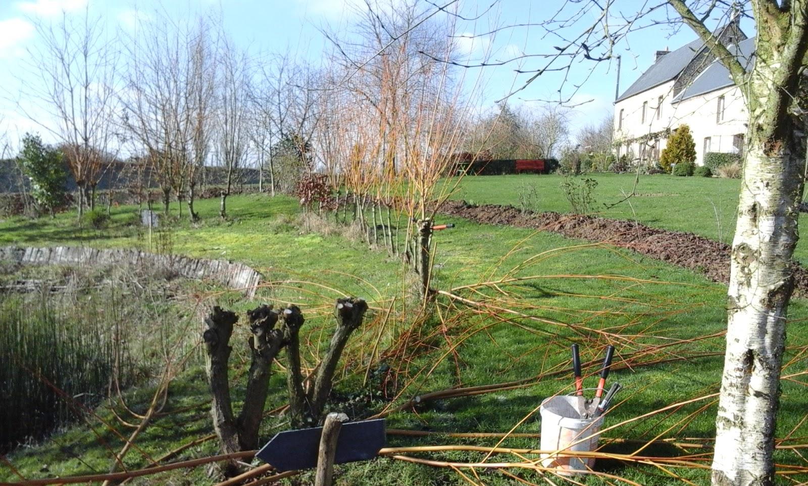 Chambres d 39 h tes au jardin des violettes les saules en for Au jardin des saules