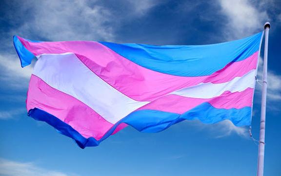 bandera-trans_333