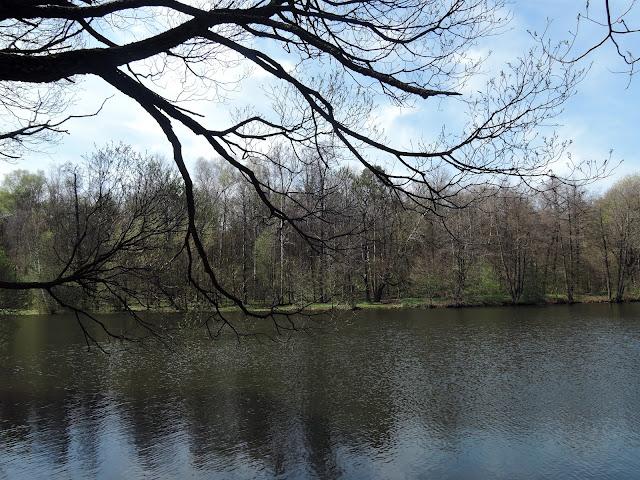 измайловский парк декоративный пруд