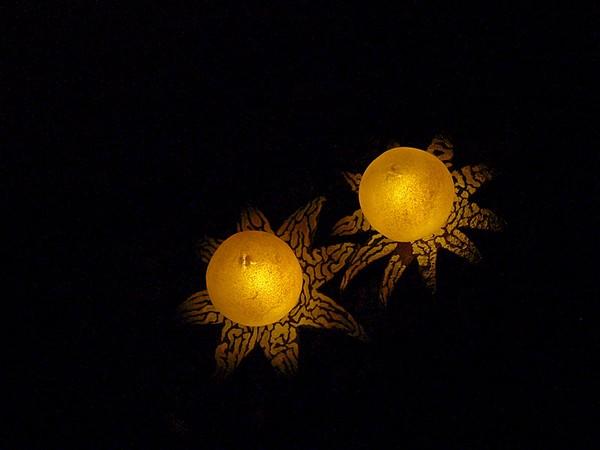 lighting mushrooms