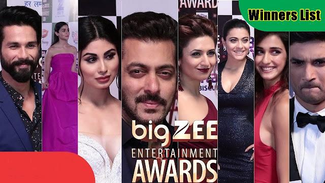 Big Zee Entertainment Awards 2017 Winners List