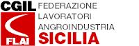 http://www.flaipalermo.it/sicilia/richiesta-incontro-per-campagna-antincendio/
