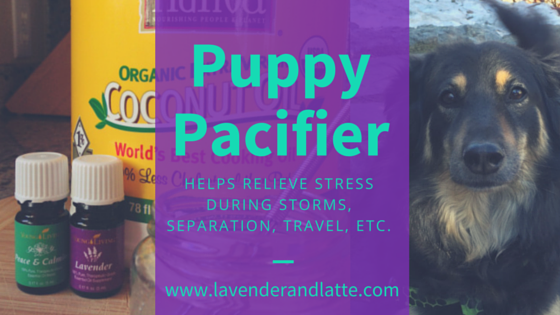 Puppy Pacifier from Lavender and Latte plus 9 other DIYs to use with Lavender essential oil