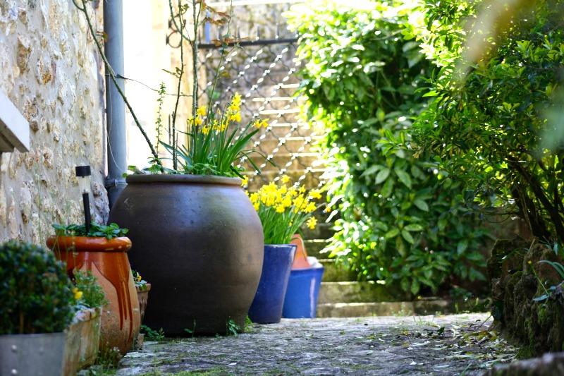 Componer jardines con macetas guia de jardin for Jardines con macetas