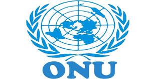 Emploi en Afrique : ONU recrute un  Chef de cabinet