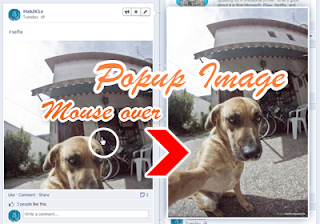 mouseover popup image viewer script