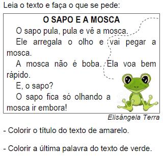 Texto O SAPO E A MOSCA, de Elisângela Terra