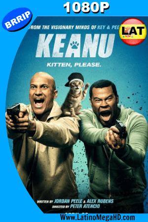 Keanu (2016) Latino HD 1080P ()