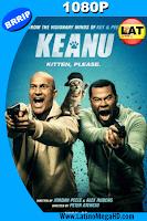 Keanu (2016) Latino HD 1080P - 2016