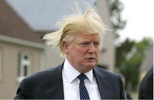 Windy Donald Trump