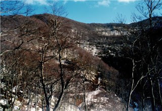 滝沢地区の折紙山。