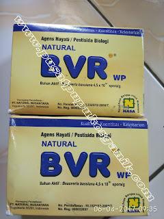 harga bvr nasa aplikasi bvr nasa penggunaan bvr nasa