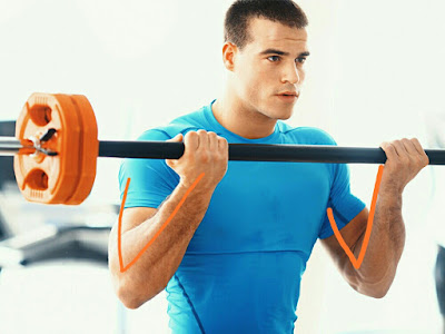 Gym biceps exercise