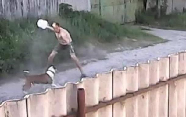 У Харківській області пітбультер'єри мало не загризли чоловіка