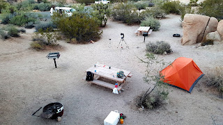 camping joshua tree national park