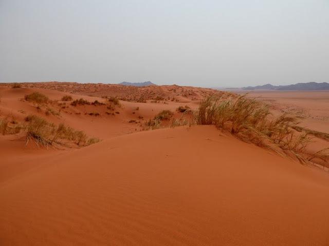le dune lungo la D707