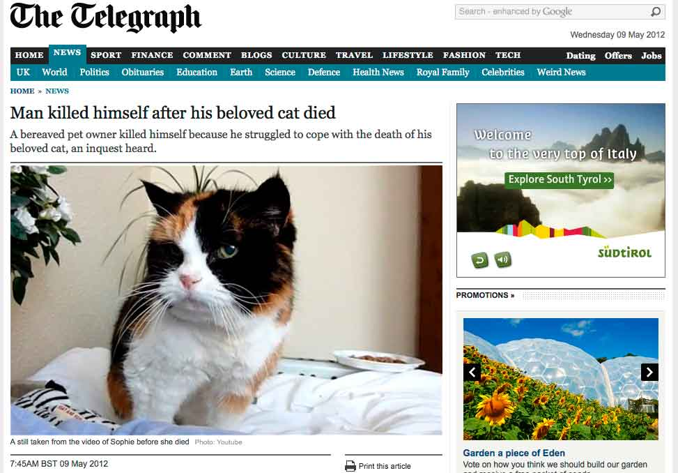 b66cb18087cce7 Michael McAleese, 44, of Poole, Dorset, was so distraught when his  13-year-old tabby cat died that he took a cocktail of drugs.