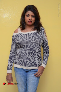 Actress Sridevi Stills in Jeans at No 1 Hero Rajendra Press Meet  0051.JPG