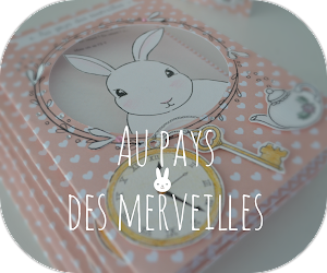http://les-petits-doigts-colores.blogspot.be/search?updated-max=2016-03-01T07:58:00-08:00&max-results=1