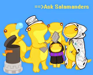 http://patronesamigurumis.blogspot.com.es/2014/12/salamanders.html