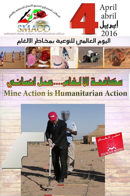 """على المجتمع الدولي بذل المزيد من الجهود للقضاء على أثار الالغام بالصحراء الغربية """"كوديسا"""""""