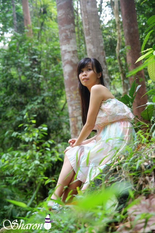 Forest Fairy at Ulu Yam