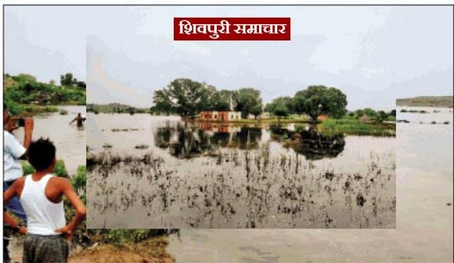 अंबारी गांव में घुसा कृष्णा बांध का बैकवाटर, मंदिर, स्कूल, आंगनबाड़ी सब पानी में डूबे | karera News