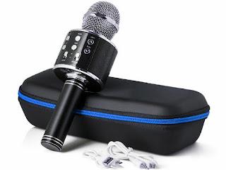 mikrofon-wster-ws-858.jpg