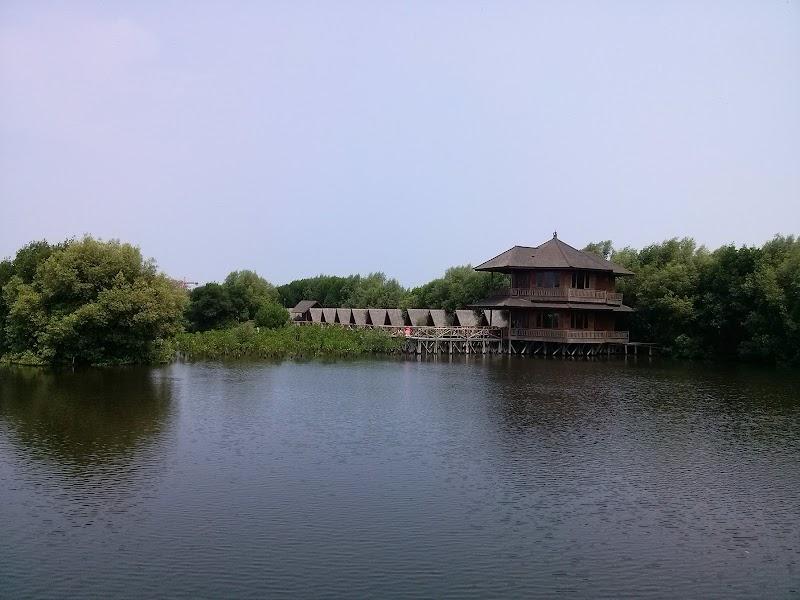 Petualangan Alam : Hutan Mangrove, Sisi lain Kota Jakarta.