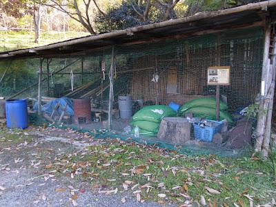 もりのたまごを植えよう 都市近郊の森を育てる会