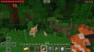 Minecraft gratuit complet mobile