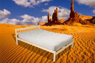 http://www.thefutonshop.com/Natural-Bed-Frames/sc/603/730