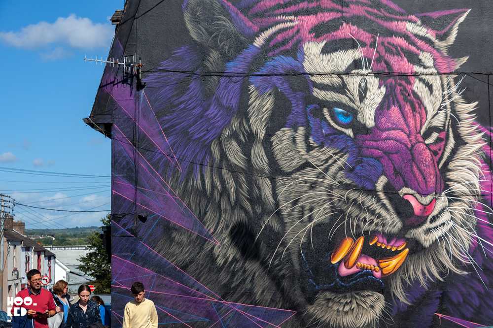 Waterford street art festival, roaring Tiger mural by artist Sonny