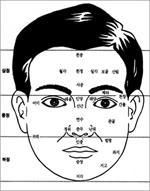 Membaca Karakter dan Sifat Seseorang dari Wajah (Fisiognomi) 3_