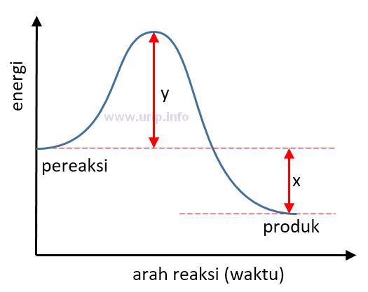 Pembahasan soal tentang profil diagram energi urip dot info manakah yang menunjukkan energi aktivasi reaksi balik pada diagram profil energi berikut ccuart Image collections