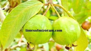 Times of Mizoram Hriselna Lam Hawi: KAWLTHEI EI THATNA