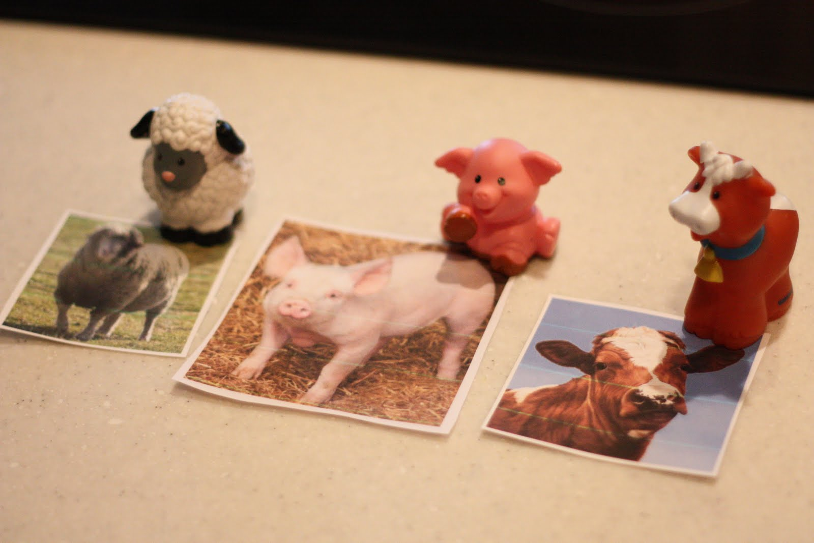 Toddler Time Matching Animals To Pictures