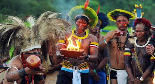 Povos indígenas Material para estudo e pesquisa