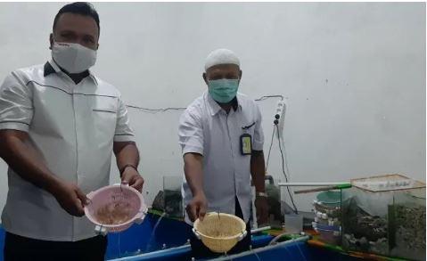 Edi Faryadi Ungkap Ditreskrimsus Polda Jambi Gagalkan Penyelundupan 44.800 Ekor Benih Lobster
