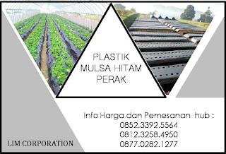 www.mulsa99.com