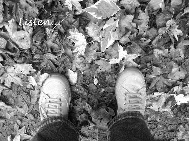 Shoes amongst autumn leaves