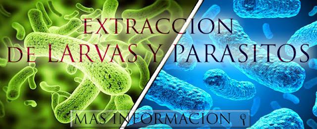 http://www.almasaranterapiasycursos.com/2018/02/extraccion-de-larvas-y-parasitos.html