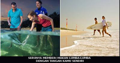 wisata-lumba-lumba-tanlooma-australia