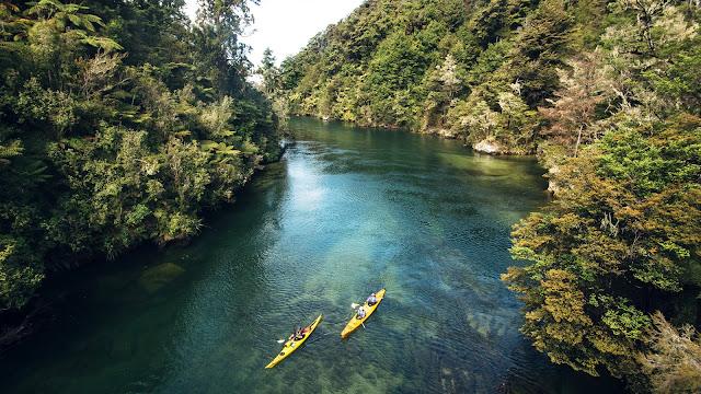 Gele kano's in de rivier. Op beide oevers groeien bomen.