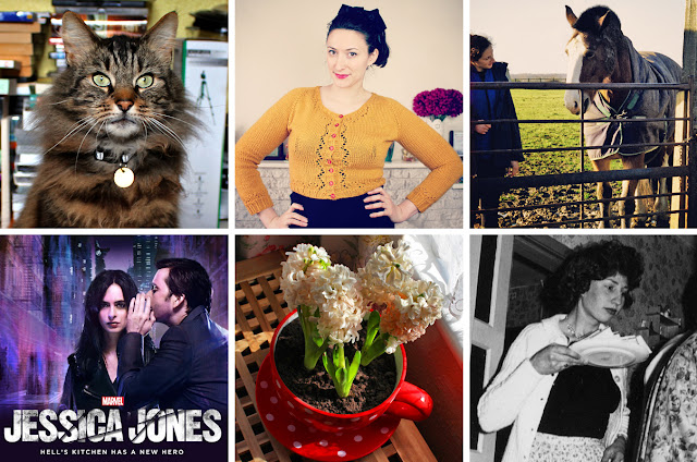 Wendy's Week - Horses & Hyacinths Header A bemused Beau // Mustard Miette // Me and Gus // Jessica Jones // Blooming Hyacinths // My  Mum in the 1960's