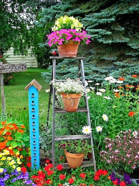 Stepladder in the Garden www.organizedclutterqueen.blogspot.com